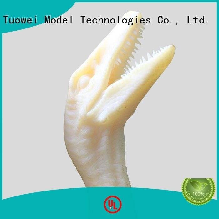 rapid prototyping 3d printing printing dinosaur 3d slasls Tuowei